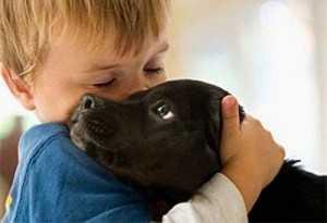 Как лечить атопический дерматит у детей - заводите собаку