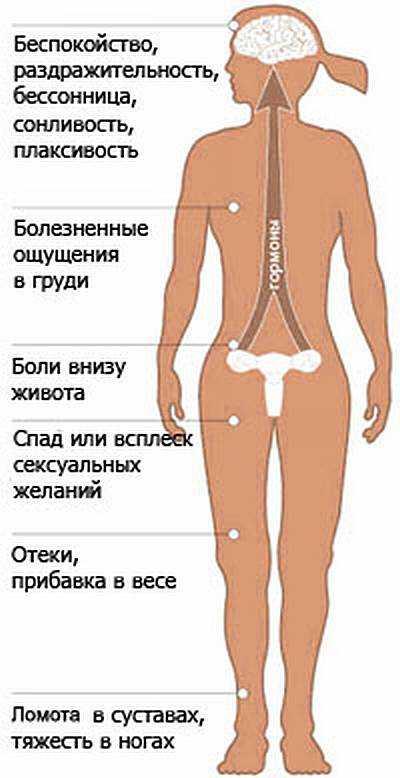 Фаза Предменструальная фото