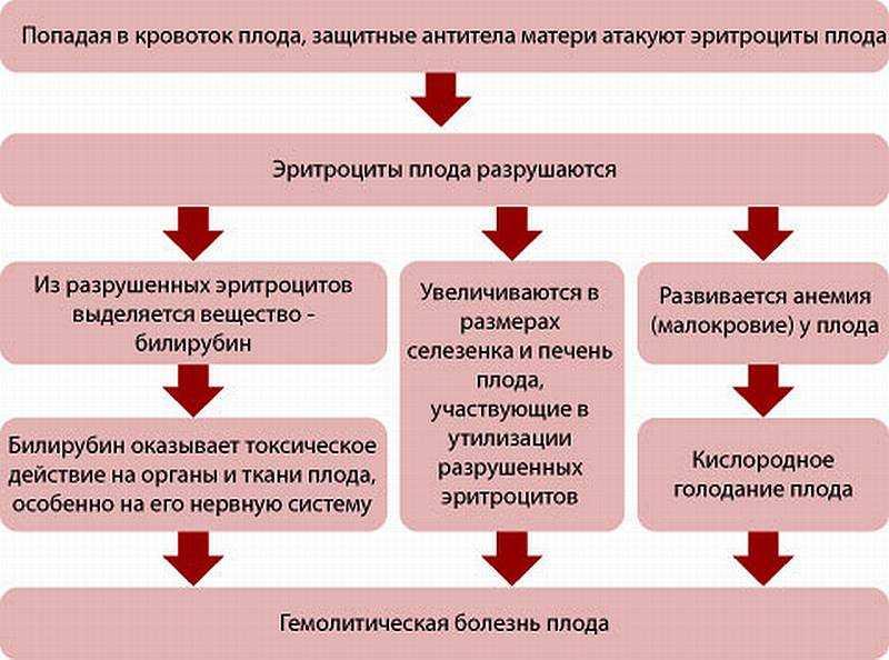 Как проявляется резус конфликт при беременности