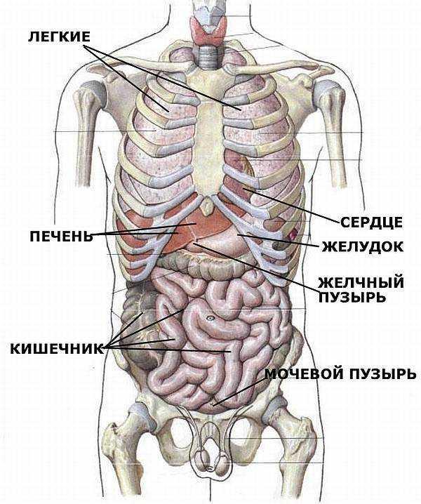 Давящая боль в грудной клетке посередине тяжело