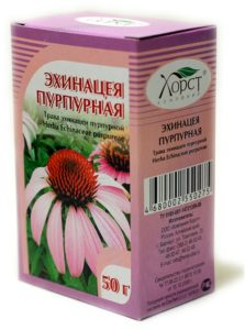 Эхинацея: лечебные свойства, показания, противопоказания, исследования эффективности, Азбука здоровья