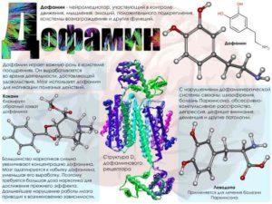 Дорфамин гормон