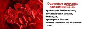 МНО в анализе крови: что это такое, норма по возрасту, причины повышения и снижения